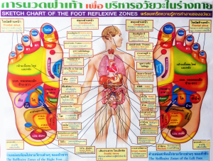 Thai reflexology chart